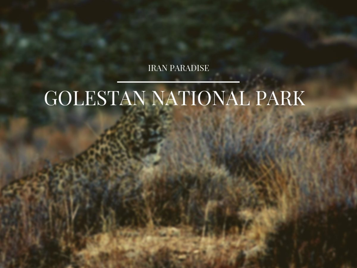 Golestan National Park