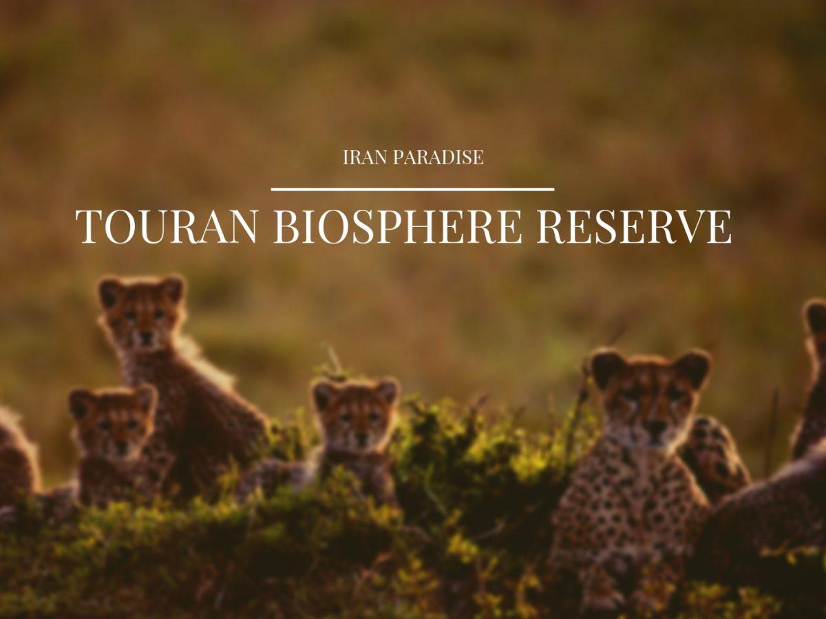 Touran Biosphere Reserve