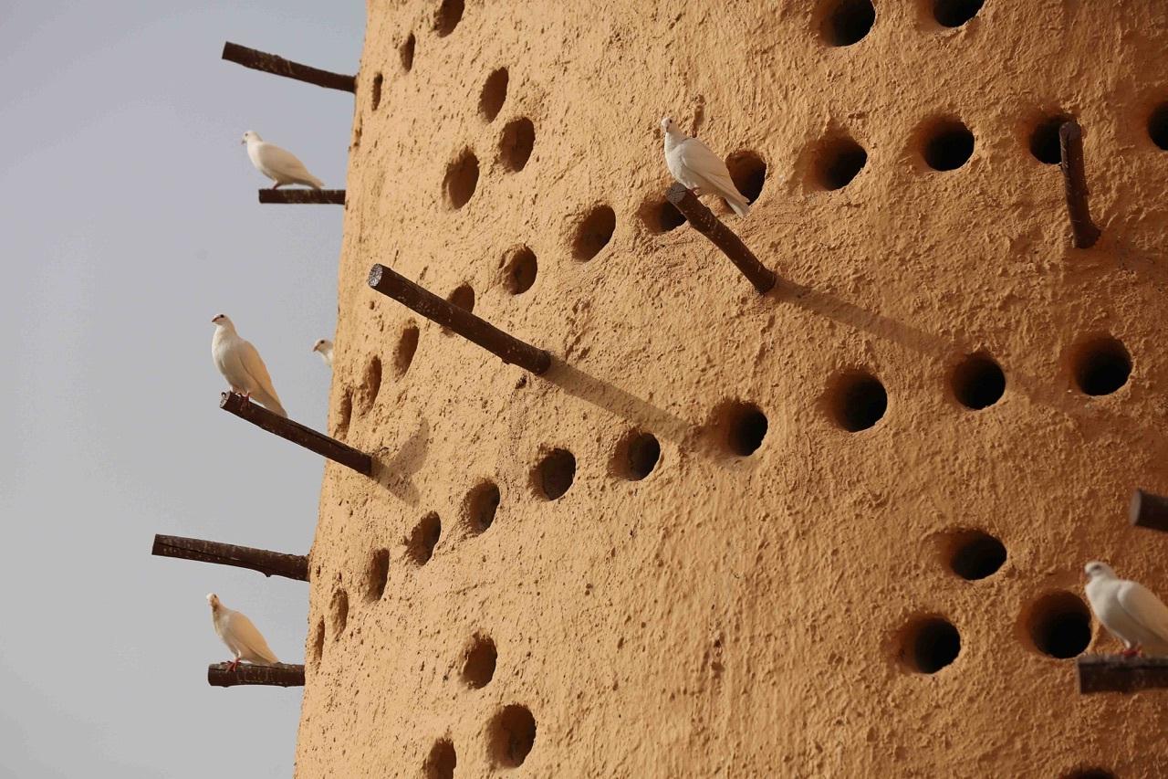 Pigeon Towers