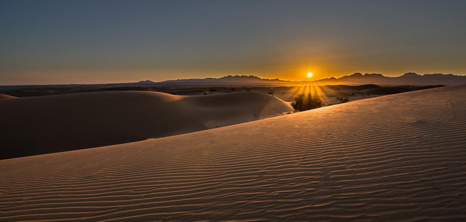 egept-desert