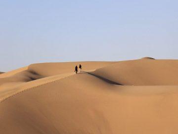glorious-desert
