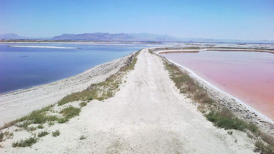 meyghan-desert