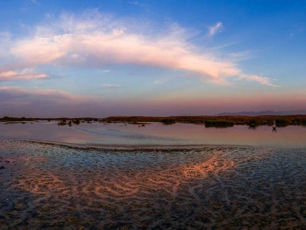 meyghan-pond