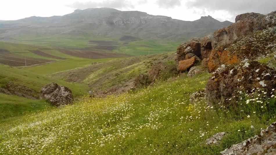 روستای-زرگز