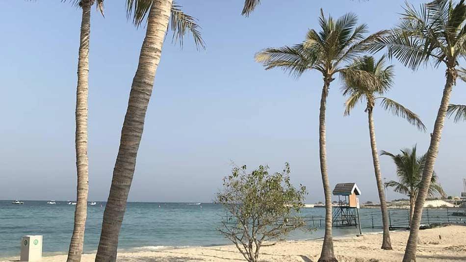 ساحل-نارگیل-کیش